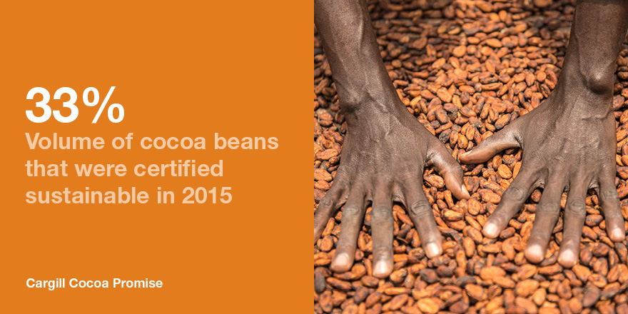 certified sustainable cocoa volumes 2015