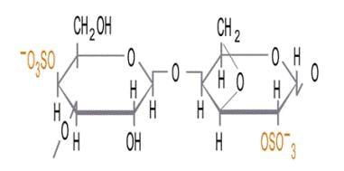 Iota 2 Sulfate - Carrageenan