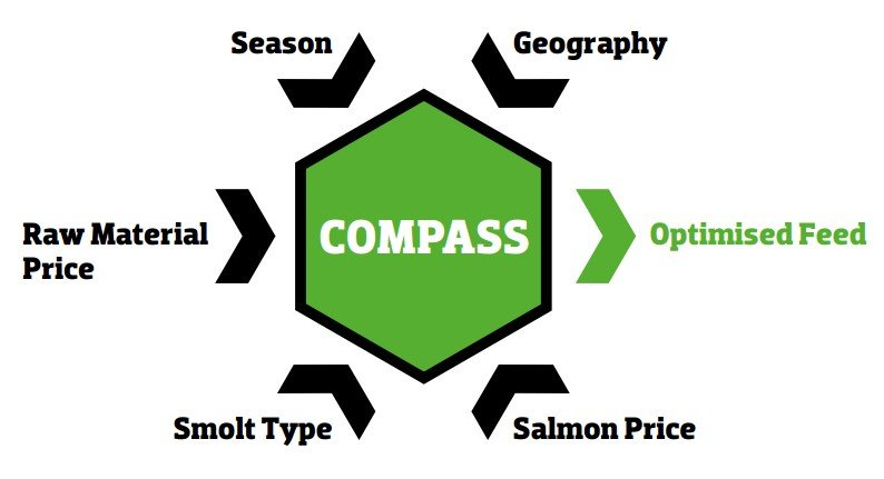 inpage innovation compass diagram can