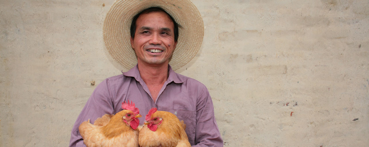 hero sustainability man holding chickens