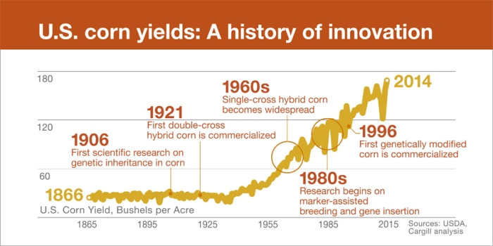 infographic-corn-yields