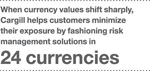 inpage 24 currencies