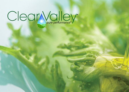 preview clear valley foodservice