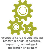 Cargill Beauty icons - Knowledge
