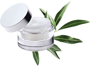 Cargill Beauty - Perfect Day Cream