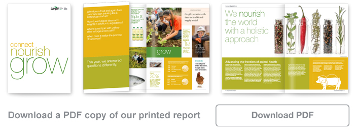 Annual Report Download