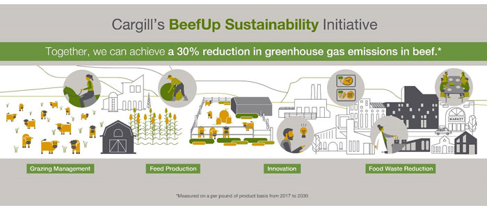 infographic-beef-up