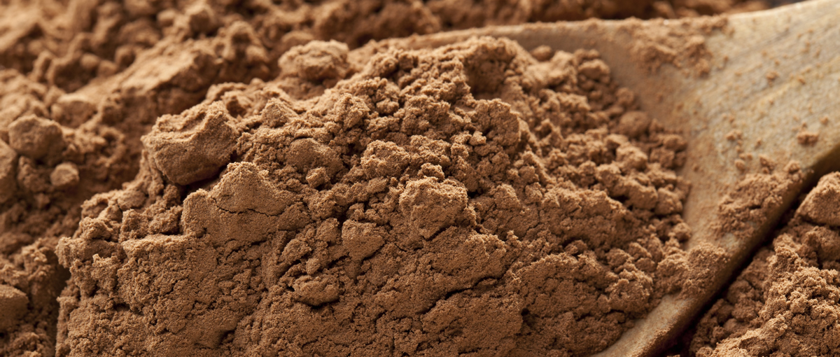 Gerkens Cocoa Powder