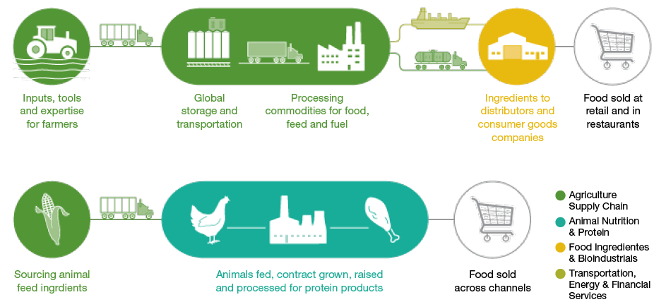 Food Products With High Sustainability Issues