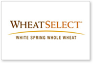 Horizon Milling® WheatSelect® white spring whole wheat flour.